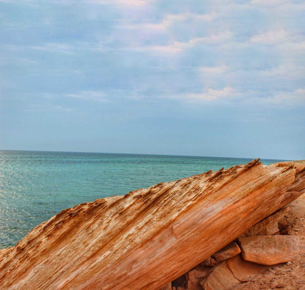 Shuweihat Island- A hidden Gem of UAE
