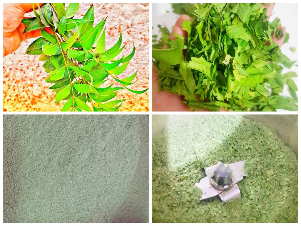 How to make Neem powder at home
