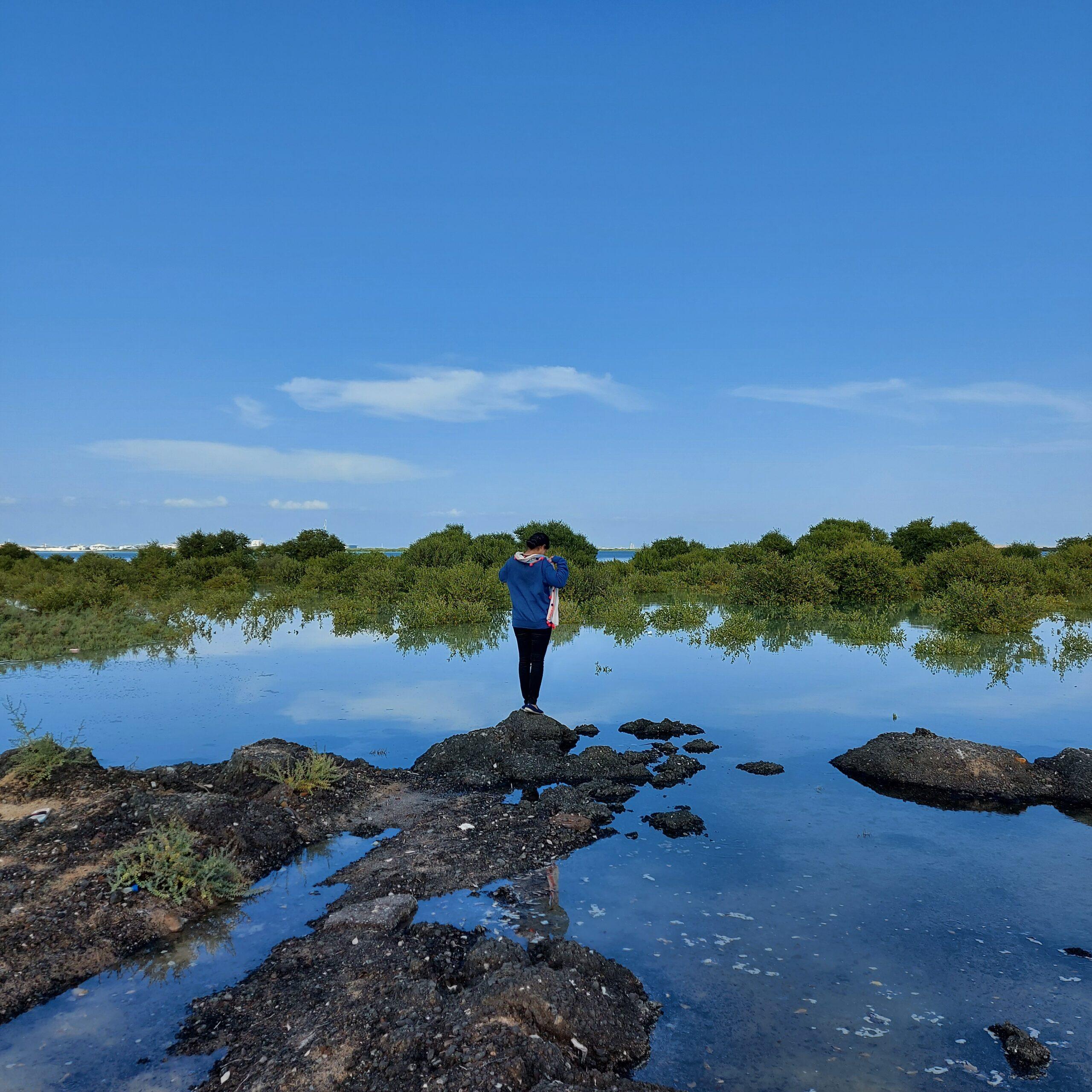 Mangrove Beach- Umm Al Quwain